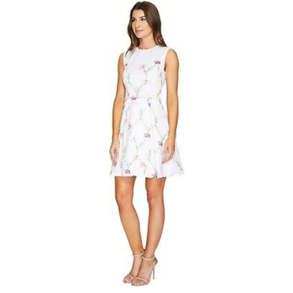 Ted Baker Dresses & Skirts - New Ted Baker Ahlanna Sketchbook A-Line Dress